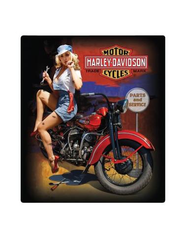 Harley Davidson Route 76 calamite 2010402