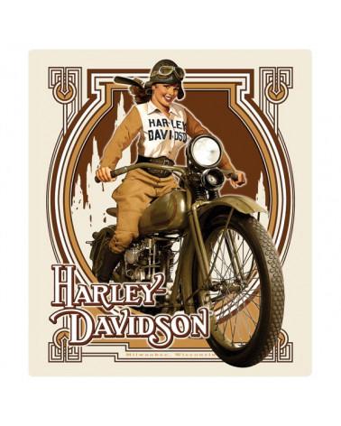 Harley Davidson Route 76 calamite 2010582