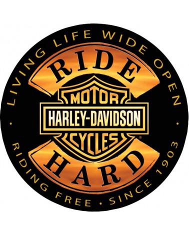 Harley Davidson Route 76 calamite 2010672