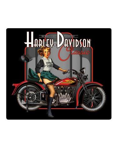 Harley Davidson Route 76 calamite 2010602