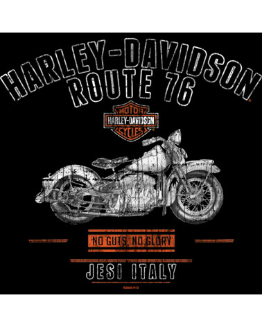 Harley Davidson Route 76 t-shirt uomo R003515