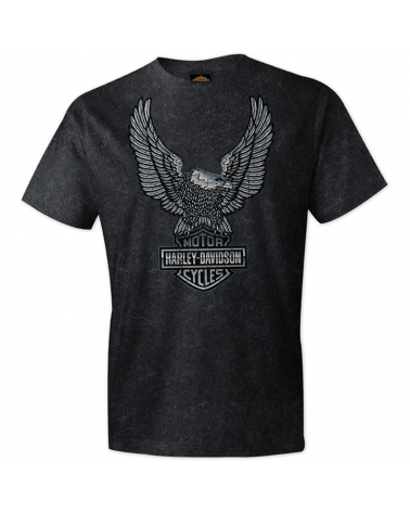 Harley Davidson Route 76 t-shirt uomo R003967